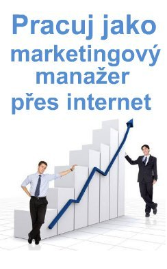 Marketingový manager přes internet.jpg